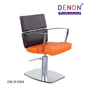 Salon Furniture Hydraulic Chair for Hair Equipment (DN. R1054) pictures & photos