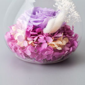 Preserved Flower for Creative Decoration Gift pictures & photos