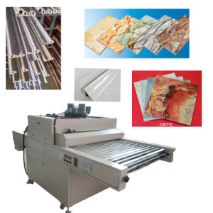 TM-UV-Dp Decorative Plates Wood Furniture Hardwood Curing Machine for UV Cured Floor Finish pictures & photos