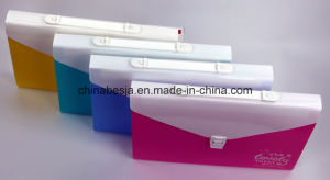 China Supplier of Expanding File. A4 Size, FC Size, Check Size. pictures & photos