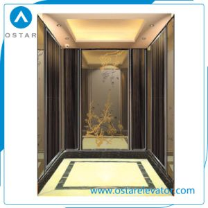 Home Used Elevator Price with Beatiful Decorationed Cabin pictures & photos