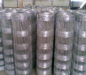 Galvanized Grassland /Field Cattle/Sheep Square Wire Mesh Fence pictures & photos