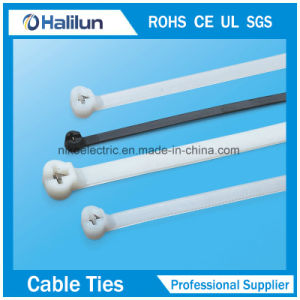 Heat-Resisting Plastic Nylon Cable Tie for Fixed Object pictures & photos