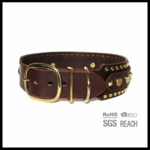 Custom Luxury Leather Studded Posh Pet Dog Collars with Gemstone pictures & photos