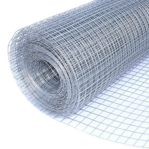 China Manufacturer Supplier Galvanized Mesh 1/4′′ 1/2′′ Welded Mesh pictures & photos