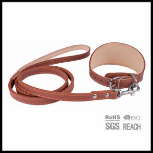 Persenalized Padded Leather Pitbull Dog Collar and Leash pictures & photos