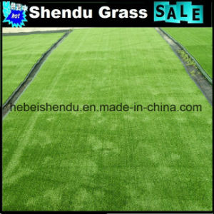 Cheap Man Glue Artificial Grass Carpet 250stitch pictures & photos