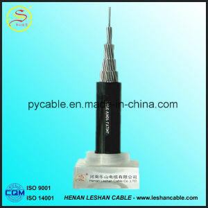 1kv 10kv XLPE Insulated Overhead ACSR Conductor ABC Cable pictures & photos
