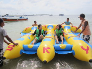 3 Tubes Inflatable Flying Fish Banana Boat for Water Sports pictures & photos