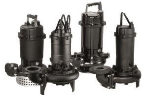 Submersible /Sewage Pump-Dml pictures & photos