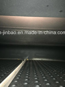 IR and Hotair Oven (JB-800ZB) pictures & photos
