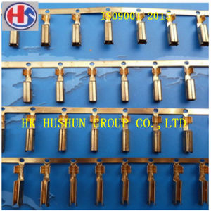 Supply Copper Series Cable Terminal for Automobile Battery (HS-DZ-0064) pictures & photos