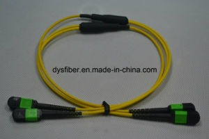 MPO-MPO 2X12f Singlemode Patchleads pictures & photos