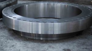 1055 1060 Forging Carbon Steel Pipe Flange pictures & photos