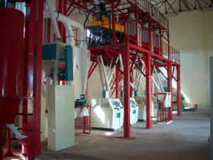 Corn Flour Mill Design And Installation