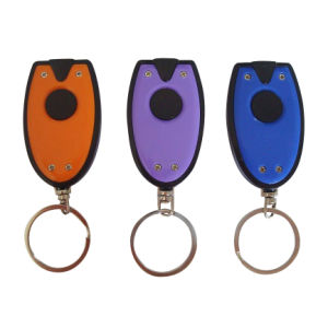 Promotional Mini Plastic LED Keychain with Light pictures & photos