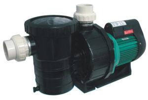 Swimming Pool Water Pump (MC series)