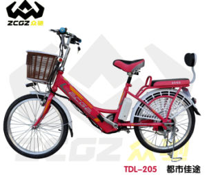 High Quality 240W Lithium E Electric Bicycle