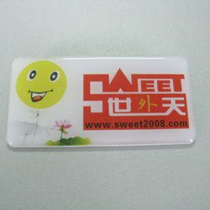 Name Badge (PBG21010) pictures & photos