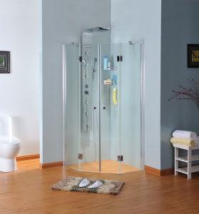 Shower Enclosure (C2.3)