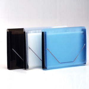 13 Inner Transparent Colored Expanding Wallet in A4 (X11)