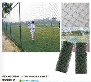 PVC Coated Hexagonal Wire Mesh Fence pictures & photos
