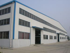 Steel Structure Workshop for Pharmaceutical Factory (SSW-495) pictures & photos