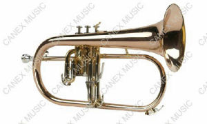 High Grade Flugelhorn (FL-665L) / Brass Instrument Flugelhorn pictures & photos