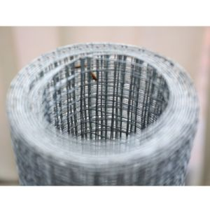 Galvanized Welded Wire Mesh 2′′*2′′ pictures & photos