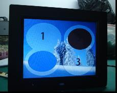 8 Inch Digital Photo Frame