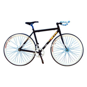 Fixed Bike (WT-2716) pictures & photos