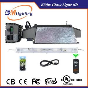 De Double End 630W CMH Grow Light Power Electronics Kit pictures & photos