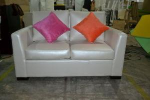 Modern Loveseat/Living Room Sofa (XY0778)