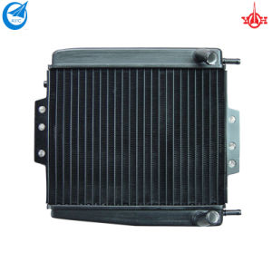 185*238*24mm Aluminum Motorcycle Radiator for Italy Piaggio MP3 (DSR-44D)