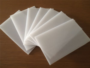 White Color PP Corrugated Hollow Sheet for Printing pictures & photos