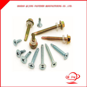 Drill Tail Screw, Self Tapping Screw, Seal Ring. pictures & photos
