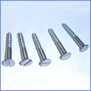 Galvanized Slotted Drive Flat Head Wood Screw pictures & photos