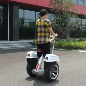 Two Wheel Human Transporter Freeyoyo G3 Cargo pictures & photos