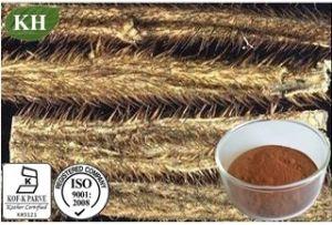 100% Natural Siberian Ginseng Extract; Acanthopanax Senticosus; Eleutherococcus Senticosus pictures & photos