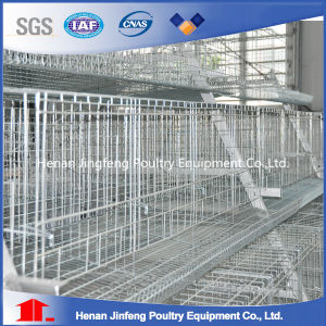 Automatic Chicken Layer Cage/Chicken Egg Poultry Farm Equipment pictures & photos