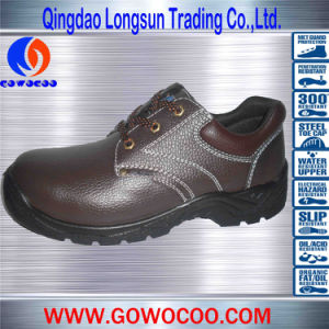 Brown Comfortable PU Sole Safety Footwear (GWPU-1003)