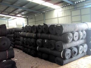 80g HDPE Green or Black Shade Net pictures & photos
