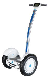Electri Chariot Two Wheels Self Balancing off Road Scooter