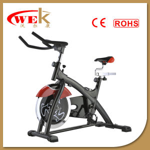 Home Use Exercise Bike (SP-520)
