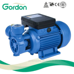 Copper Wire Booster Electric Peripheral Water Pump with Spare Parts pictures & photos