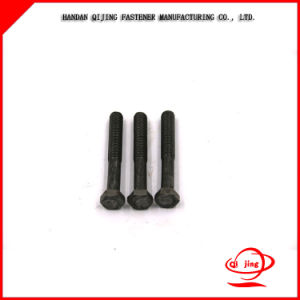 Black Bolt 8.8 Grade/High Tensile Strength Structural Hex Bolts and Nuts pictures & photos