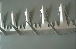 Wall Spike of Galvanized Steel