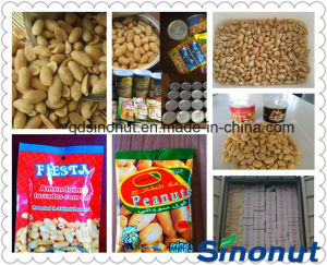 Roasted Salty Peanut in Can 30g/Bag pictures & photos