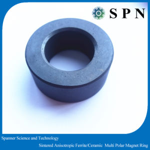 Permanent Ferrite Multipole Magnet Rings Sintered Ceramic pictures & photos