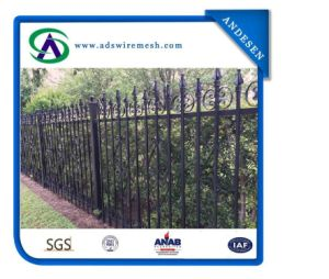 Welded Commercial Decoratiive Steel Fence/Ornamental Metal Fence pictures & photos